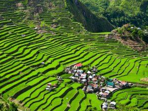 Экскурсия на рисовые террасы Банауэ